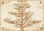 Как составить генеалогическое дерево?