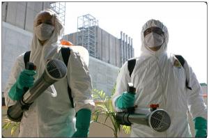 Химическая обработка удалит трупный запах